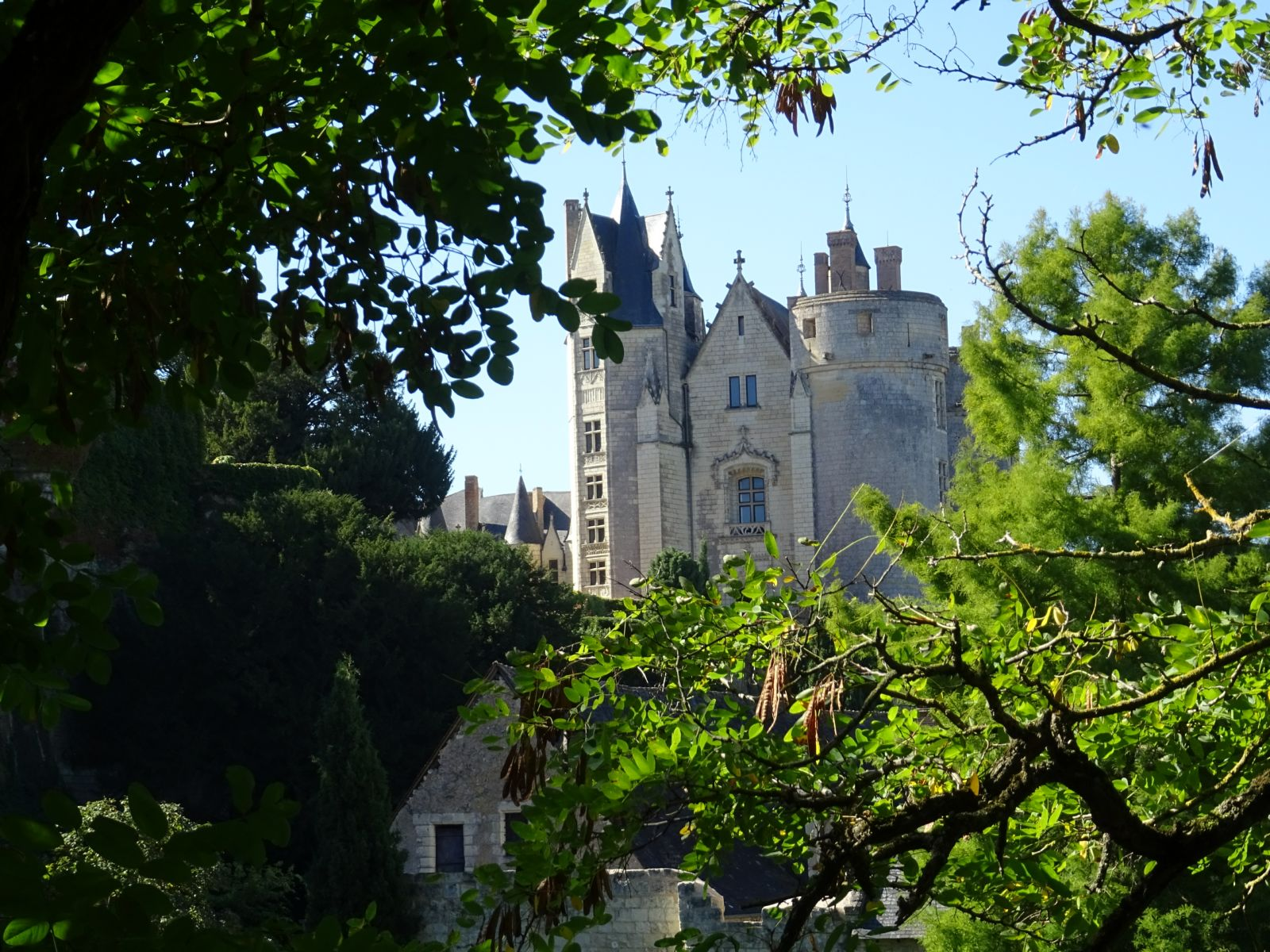 Chateau montreuil bellay 1