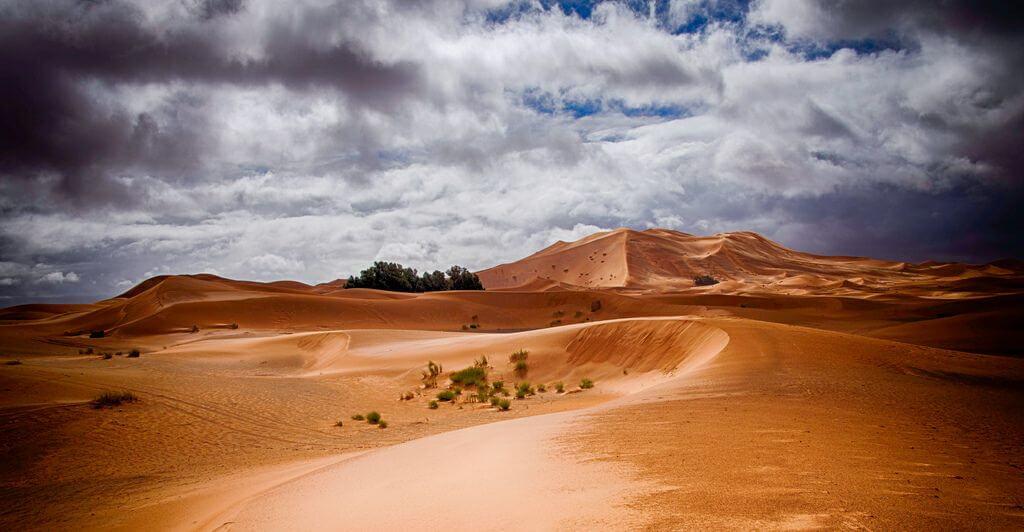 Desert 2 1