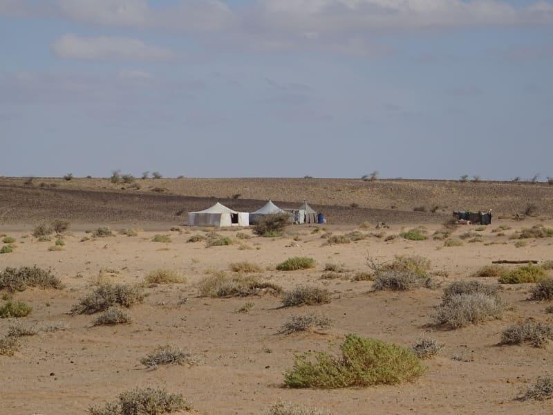 Nomades dans le désert