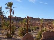 Le même village dans la palmeraie