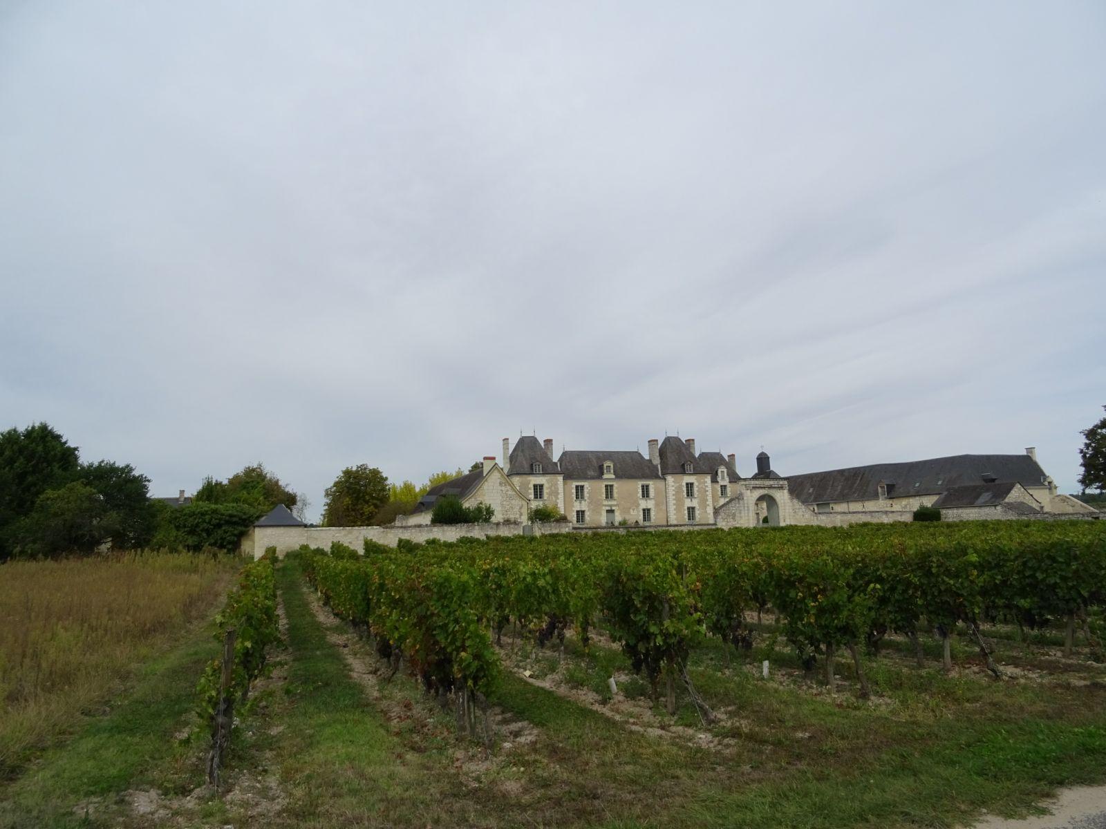 Un chateau en bord de Loire