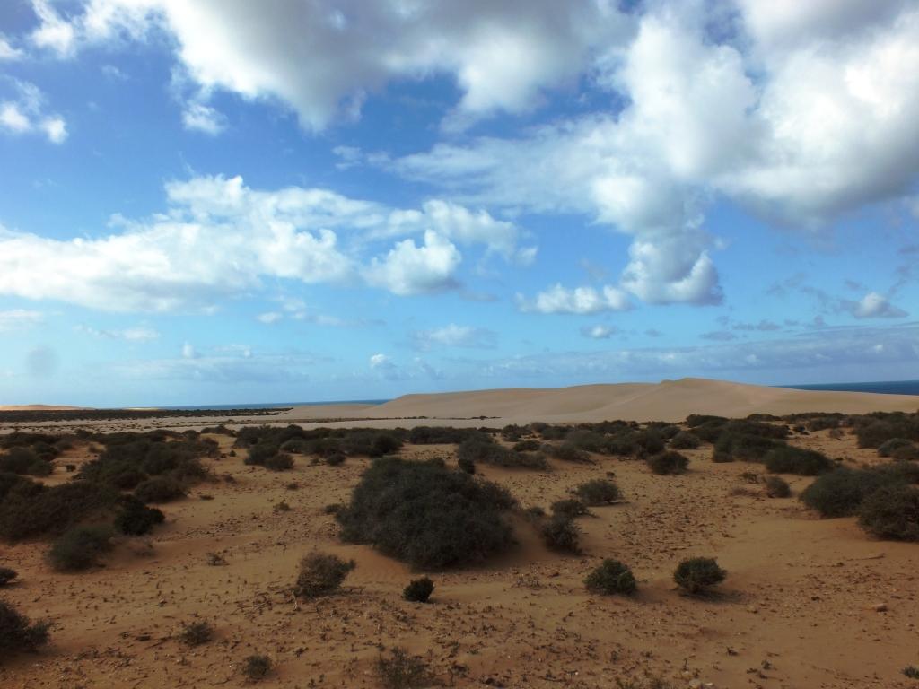 Dunes et pistes