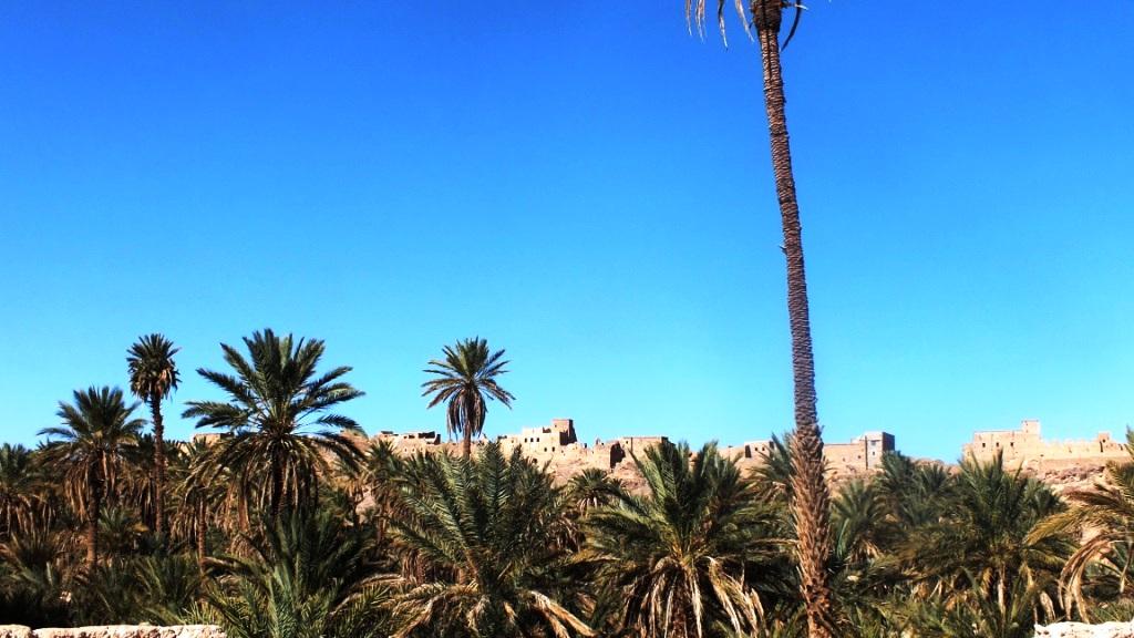 Le vilage derrière la palmeraie