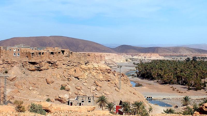 Palmeraie au fond d'un Oued