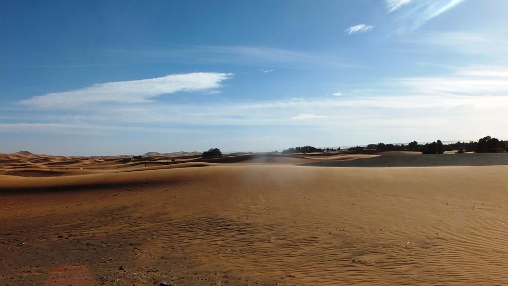 Piste dans désert