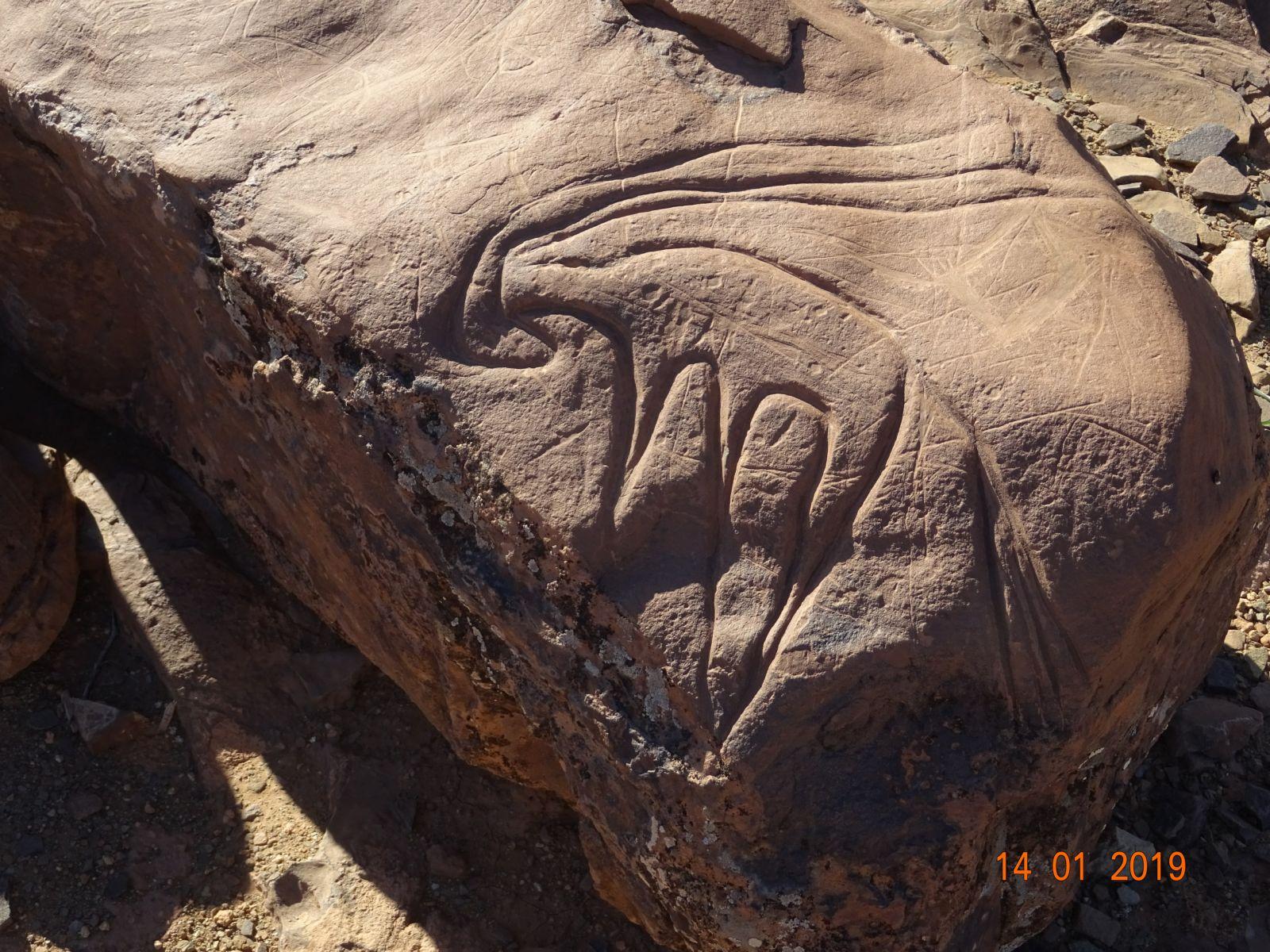 Les peintures rupestres 4 1