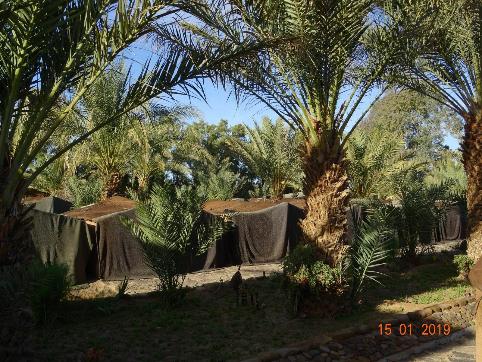 Les tentes berberes du camping 1