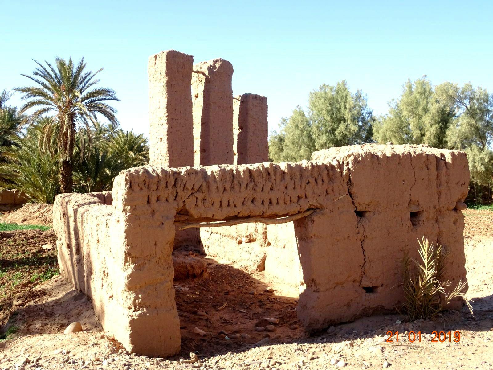 Ruines dans la palmeraie